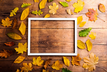 Photo pour Autumn leaf composition with picture frame. Studio shot on wooden background. - image libre de droit
