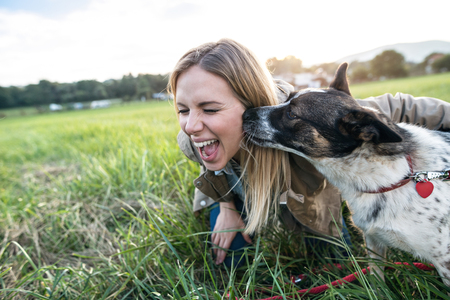 Photo for Beautiful young woman on a walk with a dog in green sunny nature, dog licking her face - Royalty Free Image