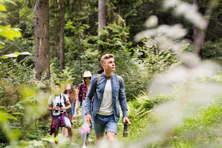 Foto de Teenagers with backpacks hiking in forest. Summer vacation. - Imagen libre de derechos