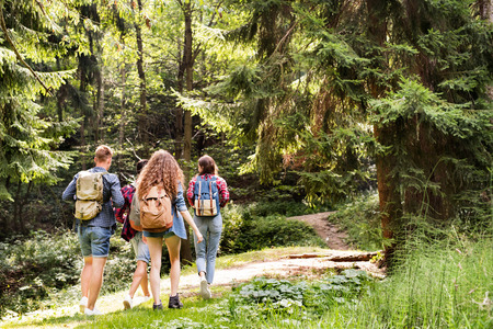 Photo pour Teenagers with backpacks hiking in forest. Summer vacation. - image libre de droit