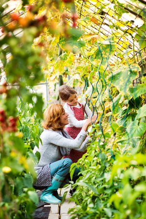 Photo for Senior woman with grandaughter gardening in the backyard garden. - Royalty Free Image