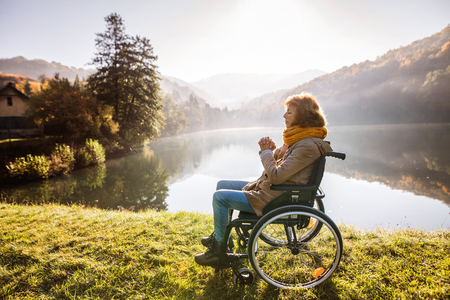 Photo for Senior woman in a wheelchair in autumn nature. - Royalty Free Image