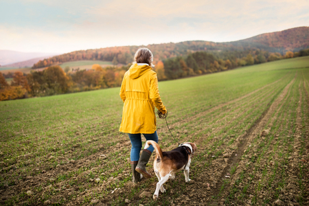 Photo pour Senior woman with dog on a walk in an autumn nature. - image libre de droit