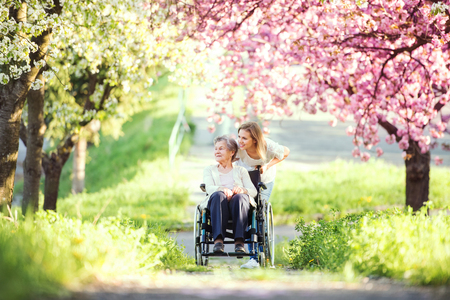 Foto de Elderly grandmother in wheelchair with granddaughter in spring nature. - Imagen libre de derechos