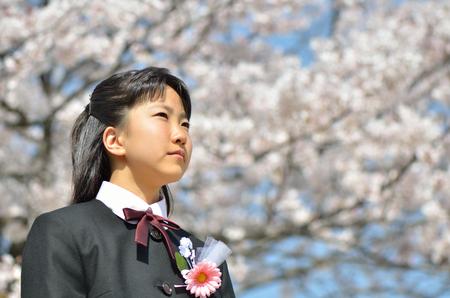 Japanese junior high school student (cherry blossom)