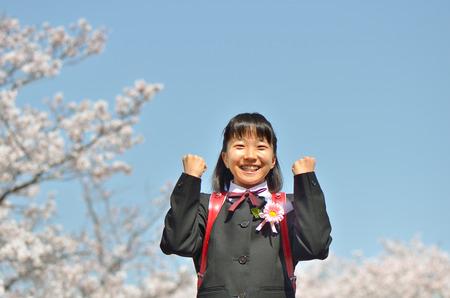 Japanese elementary school student (cherry, graduation)