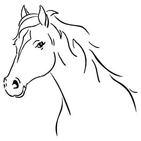 Illustration pour Black line horse sketch vector illustration - image libre de droit