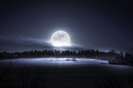 Foto de The moon rising over the forest and meadow in the cold and misty morning in the north of Sweden - Imagen libre de derechos