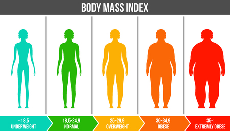 Illustrazione per Creative vector illustration of bmi, body mass index infographic chart with silhouettes and scale isolated on transparent background. Art design health life template. Abstract concept graphic element. - Immagini Royalty Free