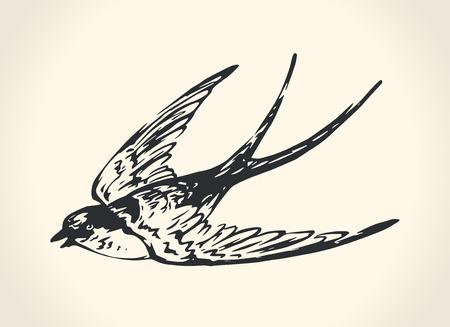 Illustration pour Vintage illustration of swallow - image libre de droit