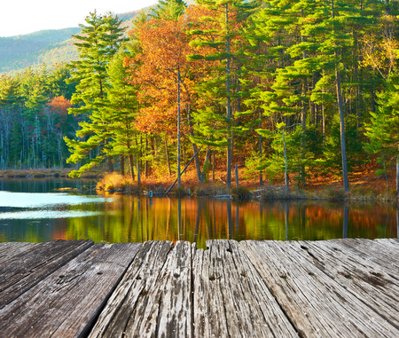Photo for Pond in White Mountain National Forest, New Hampshire, USA. - Royalty Free Image