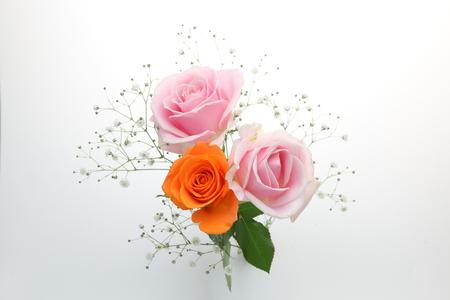 Foto für bouquet of roses and babys breath in a white background - Lizenzfreies Bild