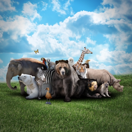 Foto de A group of animals are together on a nature background with text area. Animals range from an elephant, zebra, bear and rhino. - Imagen libre de derechos