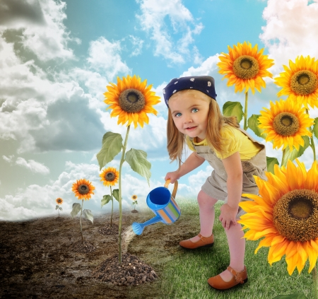 Photo pour A young little girl is watering suflowers in a field garden  One side is dry, the other side is in full bloom for an enviornment or nature concept   - image libre de droit