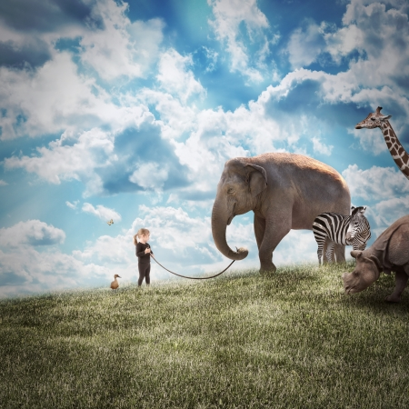 Foto de A young girl is walking a big elephant on a wild landscape with other animals following on a path to protection or freedom. - Imagen libre de derechos