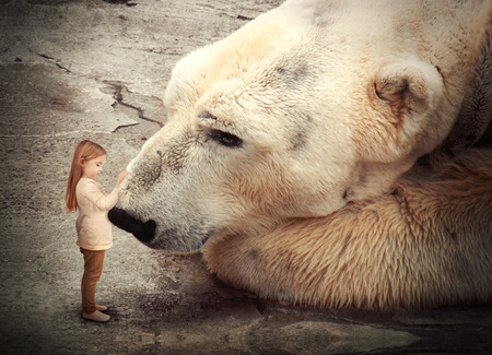 Photo pour A little girl is petting a polar bear and the big, wild animal is looking at her  Use it for a peace or conservation concept  - image libre de droit