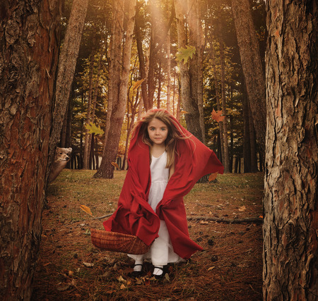 Photo pour A little girl is standing as little red riding hood in the forest with a wolf animal hiding behind trees for a fear or fairytale concept. - image libre de droit