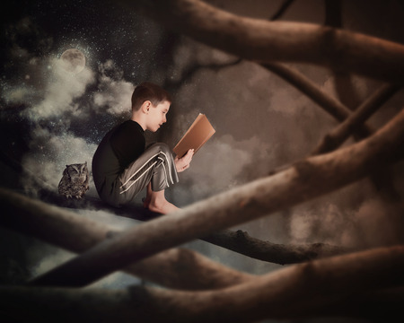 Photo pour A little boy is sitting on a tree branch reading on old story book with an owl in the dark woods for an education or imagination concept. - image libre de droit