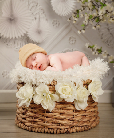 Photo pour A cute newborn baby is sleeping in a basket with whte flowers and a texture wall background for a photography portrait or love concept. - image libre de droit