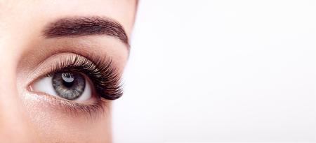 Foto de Female Eye with Extreme Long False Eyelashes. Eyelash Extensions. Makeup, Cosmetics, Beauty. Close up, Macro - Imagen libre de derechos