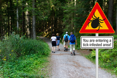 Foto per Warning sign beware of ticks in infested area in the green woods with hikers - Immagine Royalty Free