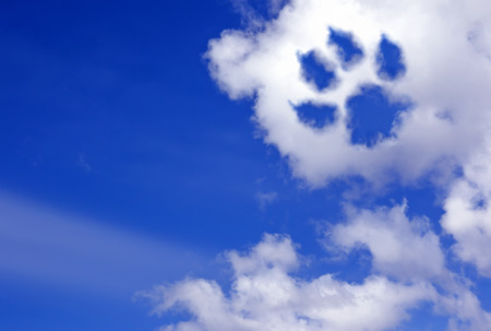 Photo for dog paw trail in the sky clouds - Royalty Free Image