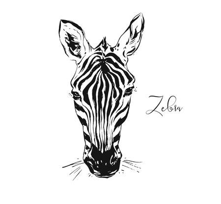 Illustration pour Hand drawn vector abstract artistic ink textured graphic sketch drawing illustration of wildlife zebra head isolated on white background - image libre de droit