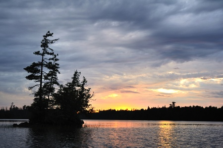 Scenic Island with Pine and Cedar Trees on a Remote Wilderness Lake at Sunset