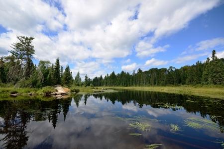 Photo pour Reflections of Clouds on a Wilderness River - image libre de droit