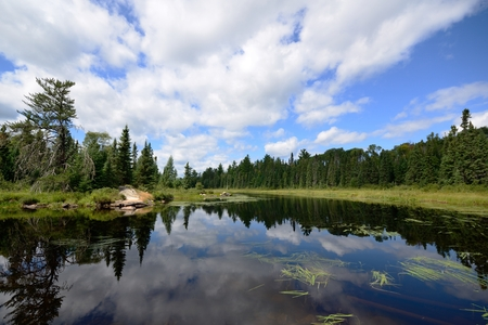 Foto de Reflections of Clouds on a Wilderness River - Imagen libre de derechos