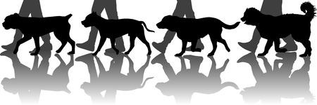 Illustration pour Dogs training - image libre de droit