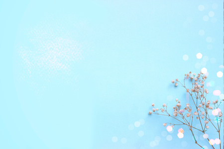 Foto de Baby blue background with small white flowers and bokeh, with copy space - Imagen libre de derechos