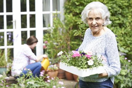 Photo pour Teenage Granddaughter Helping Grandmother In Garden - image libre de droit