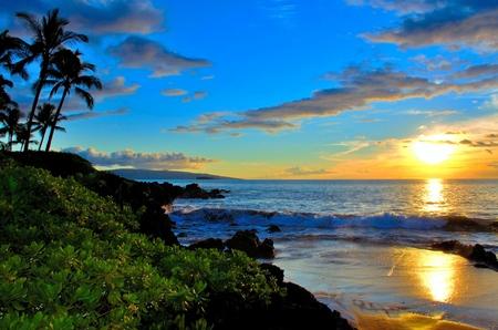 Photo pour Maui Beach Sunset with palm trees and foliage - image libre de droit