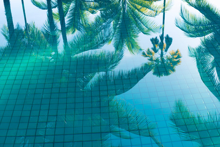 Photo pour Reflection of coconut trees and sugar plam tree in turquoise color swimming pool - image libre de droit