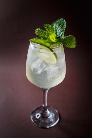 Photo pour Glass of Martini cocktail with ice, lime and mint on elegant dark brown background. - image libre de droit