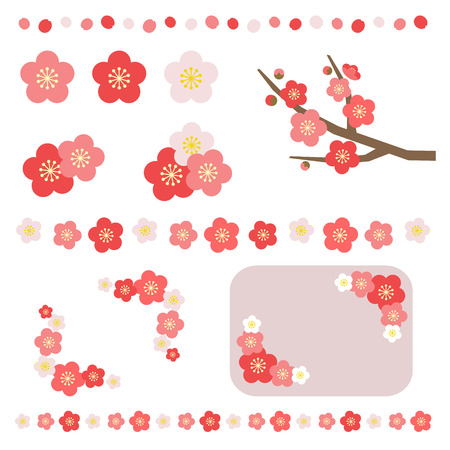 Set of apricot flower