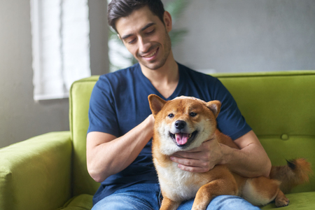 Happy guy petting his dog sitting on green sofa in room of his loft appartment. Close friendship betwween young atrractive man and his cute Shiba inu dog. Owner having fun with his pet concept