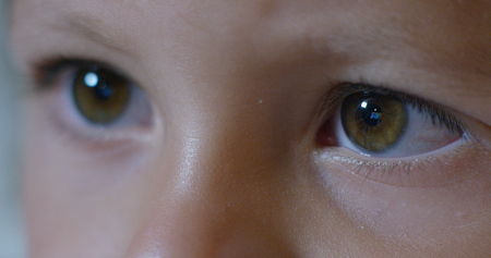 Foto per Macro of child's eyes while using a tablet, smartphone. the future of web technology and video technology concept. connections and vision of the future of children with the web. Internet protection. - Immagine Royalty Free