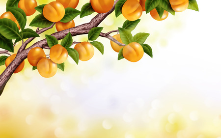 Ilustración de Apricot orchard background, fresh and attractive tree isolated on bokeh background in 3d illustration - Imagen libre de derechos