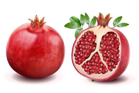 Ilustración de Ripe pomegranates with leaves isolated on a white background in 3d illustration - Imagen libre de derechos