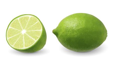 Ilustración de Lemon with its section in 3d illustration on white background - Imagen libre de derechos