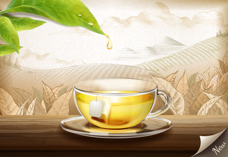 Illustration for Green tea bag ads with 3d illustration glass cup of tea on engraved plantation background - Royalty Free Image