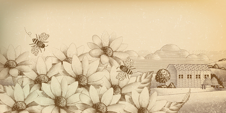 Illustration pour Vintage countryside scenery in engraving style, wildflower and bees - image libre de droit