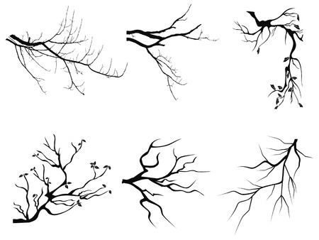 Illustration pour isolated branch Silhouette shapes from white background - image libre de droit