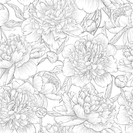 Illustration pour beautiful monochrome black and white seamless background. peonies with leaves and bud. for greeting cards and invitations of wedding, birthday, Valentine's Day, mother's day and other seasonal holiday - image libre de droit