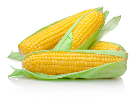 Foto de Fresh corn cob isolated on white background - Imagen libre de derechos
