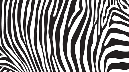 Illustration pour Zebra stripes pattern, illustration - image libre de droit
