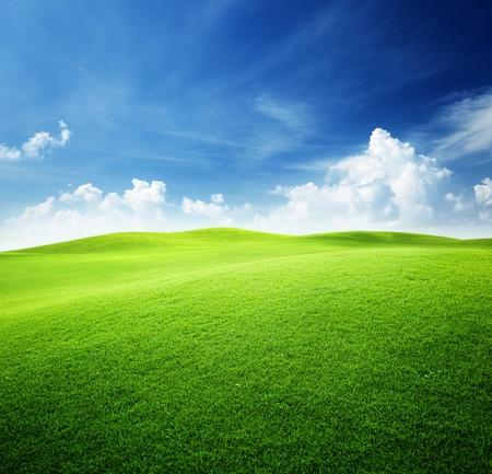 Foto de green field and blue sky - Imagen libre de derechos