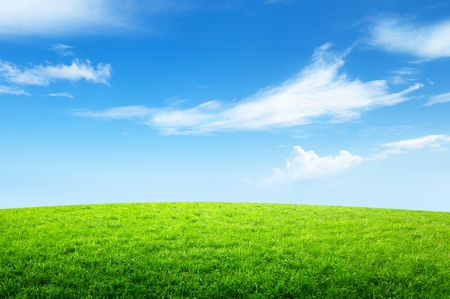 Photo pour field of grass and perfect sky - image libre de droit